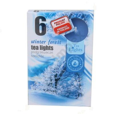 ADM0729GYIL Teamécses illatos A6 6db-os Winter Forest